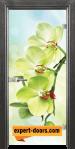 Стъклена интериорна врата Print G 13 3 G 1