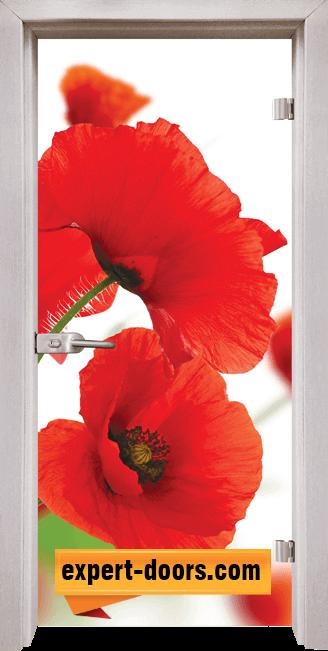 Стъклена интериорна врата Print G 13 8 D 1